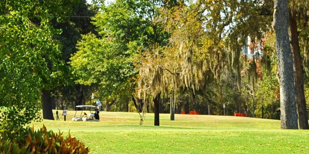 Memorial Park is located near Cottage Grove